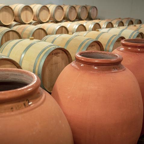 Château la Varière - Barriques et amphores pour l'élevage du vin